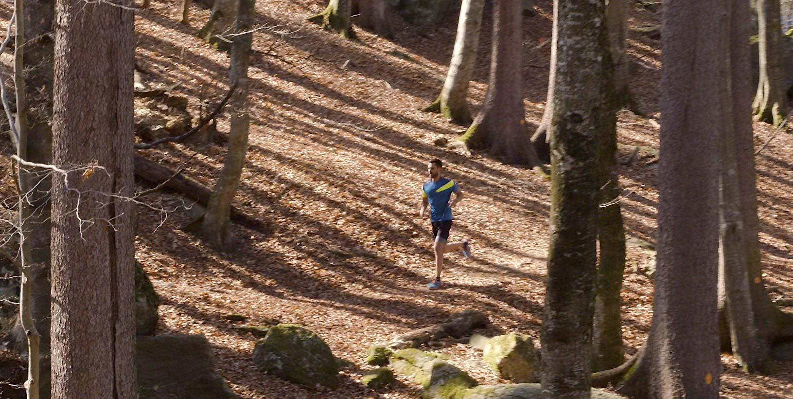 Travelling par drone avec coureur dans forêt