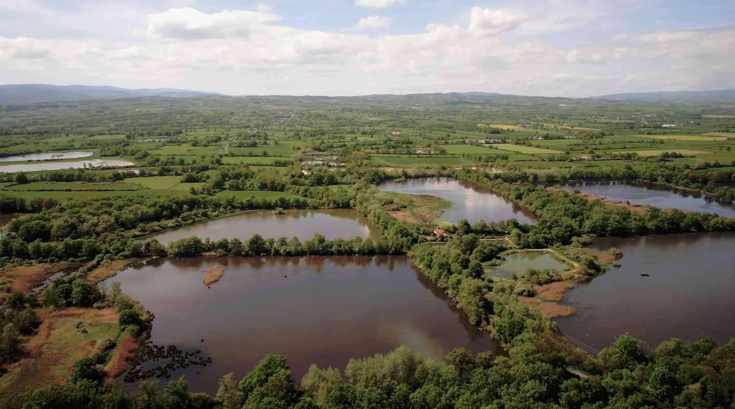 Etangs de la plaine du Forez Loire film aérien drone