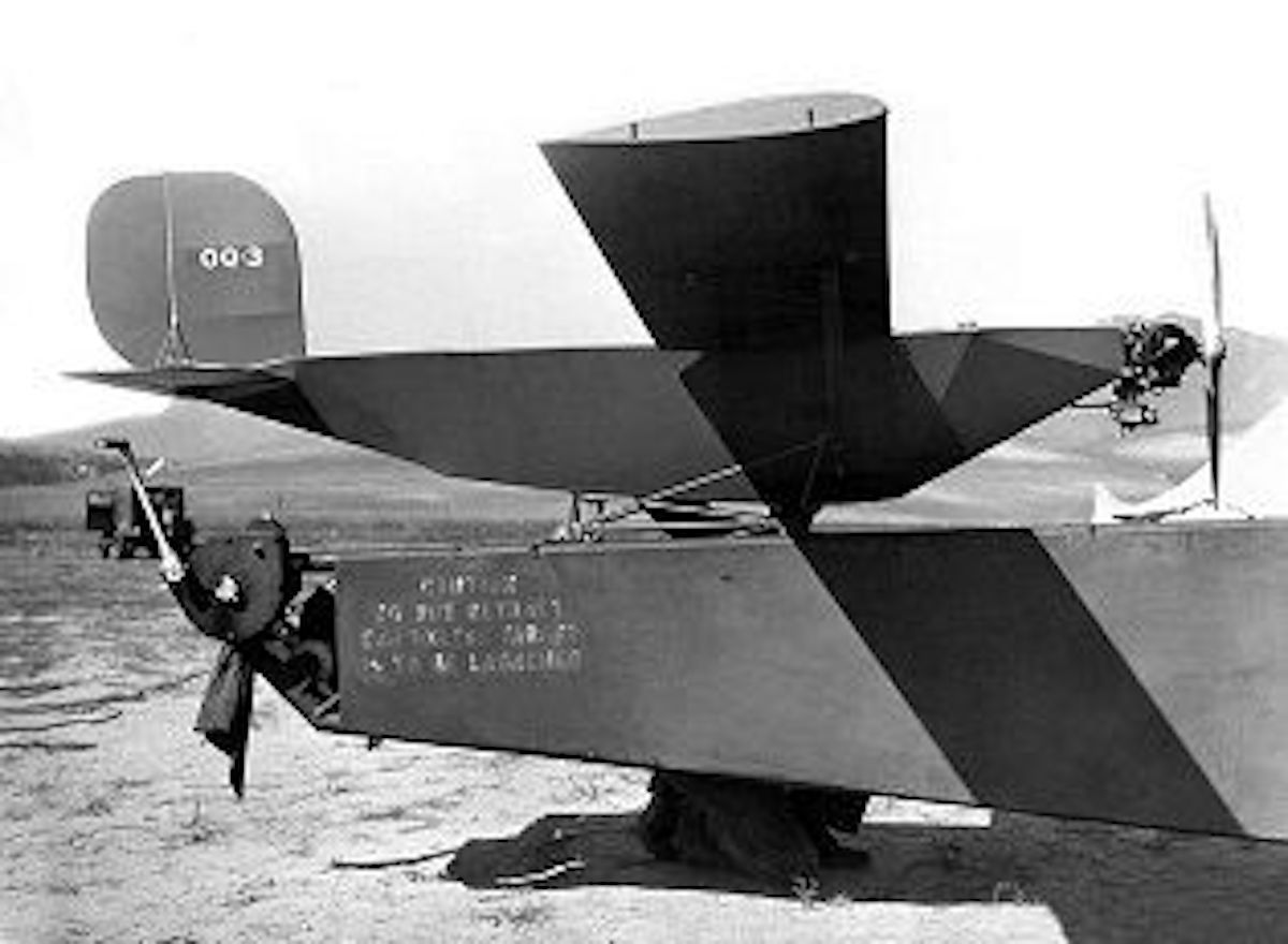 Drone Denny BW