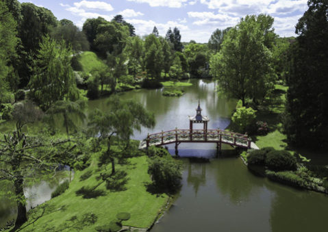 Jardin dans forêt vu par drone